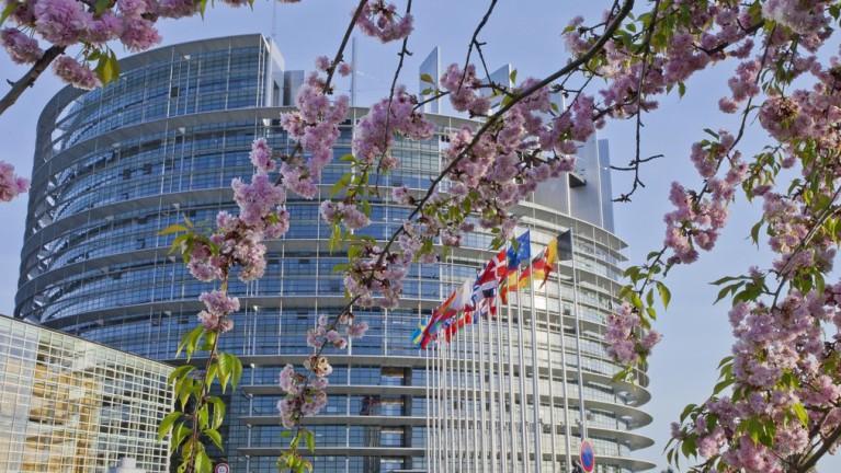 Sediul central al Parlamentului European din Strasbourg | Sursa: Culture Trip