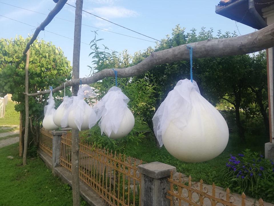 Grădina din Deal