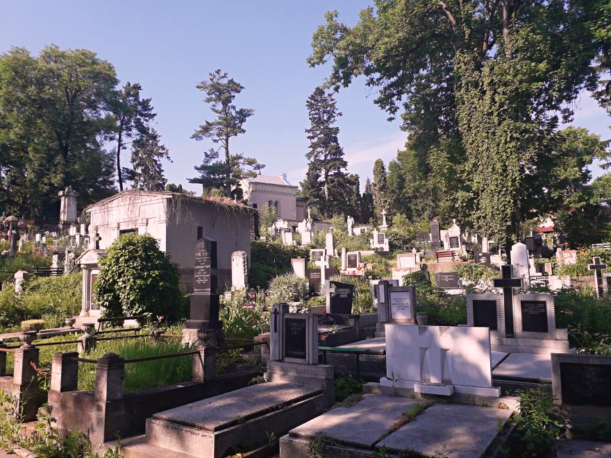 Cimitirul Central, Cluj-Napoca; Credit foto: Mira Kaliani