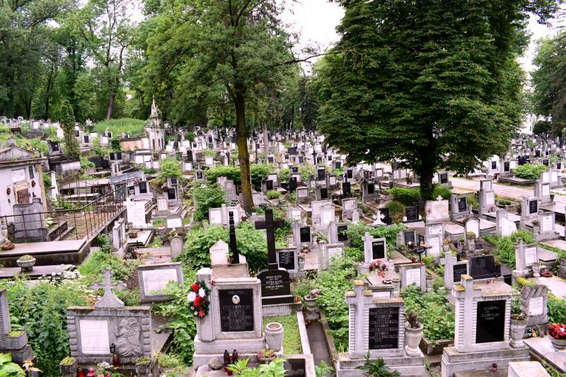 Cimitirul Central Cluj Napoca. Credit foto: Mira Kaliani