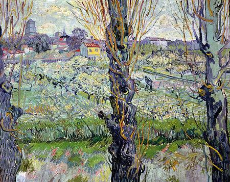 Peisaj din Arles, 1889; Artist: Vincent van Gogh | Sursa: Vincent van Gogh