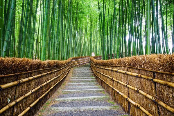 La pas prin Kyoto.