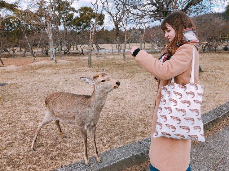 Oana Dumitru. Întâlnire cu căprioarele din Nara