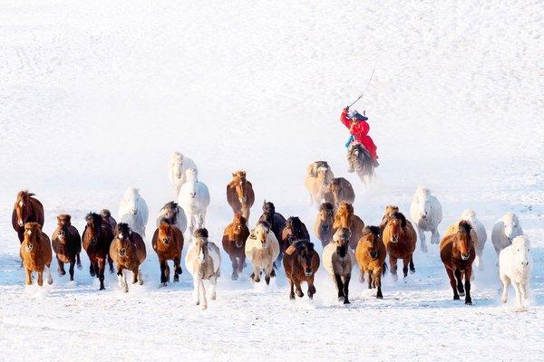 """""""Călărețul zăpezilor"""" , fotografie de Zay Yar Lin / AGORA Images"""