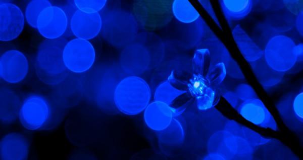 LED-ul cu lumină albastră | Sursa: Asia One