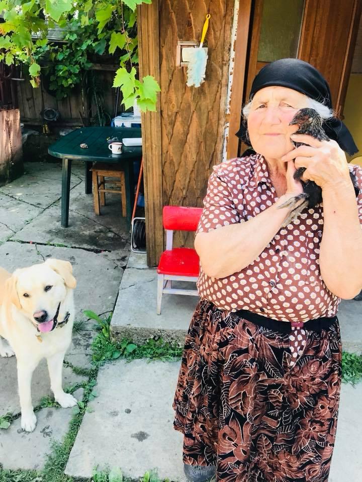 Bunica așteaptă musafirii cu plăcinte și povești