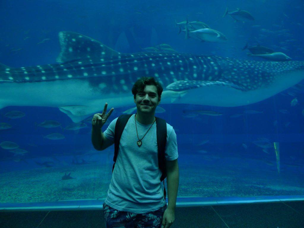 La acvariul Churaumi din Okinawa
